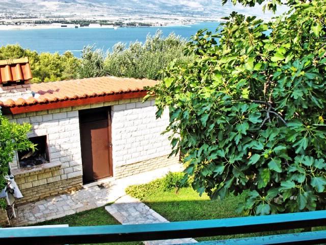 Apartments Ante - 31341-A1 - Image 1 - Arbanija - rentals
