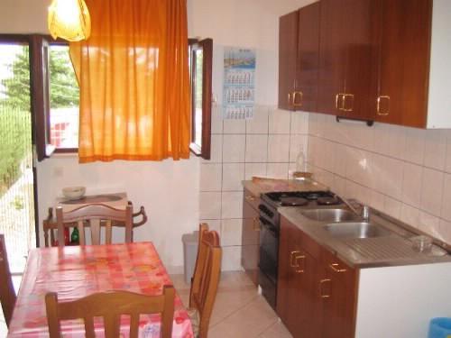 Apartments Ivan - 32541-A1 - Image 1 - Drasnice - rentals