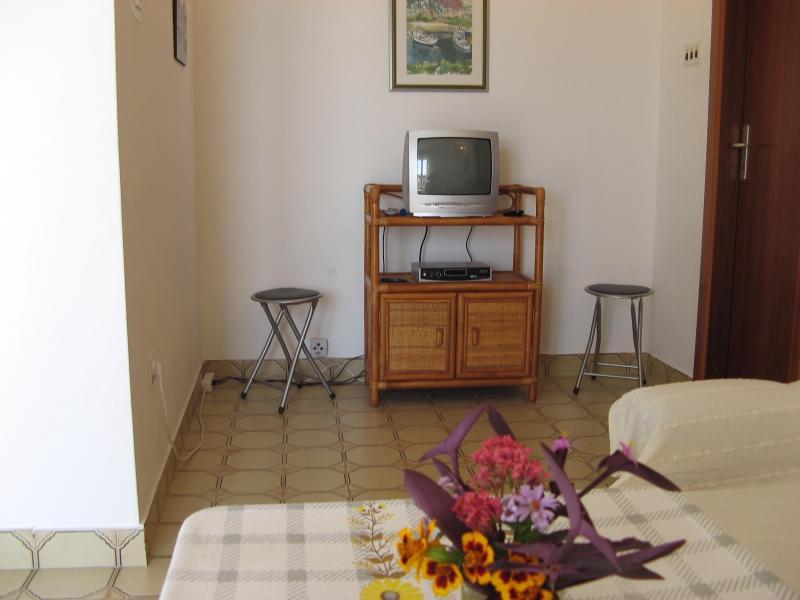 Apartments Mirjana - 33621-A1 - Image 1 - Pisak - rentals