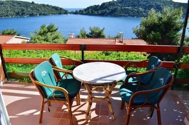 Apartment Ivan - 53131-A1 - Image 1 - Prizba - rentals
