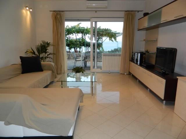 Apartment Dušan - 65202-A1 - Image 1 - Icici - rentals
