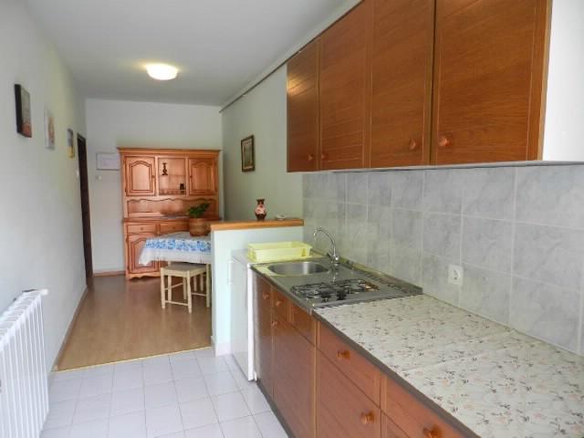 Apartments Anton - 70681-A1 - Image 1 - Rovinj - rentals