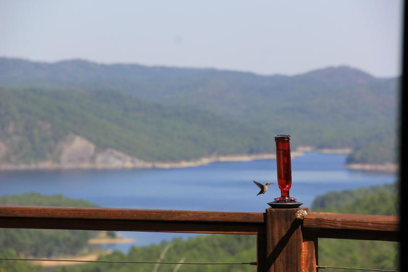 Visitor on the Deck - The Cliffhouse at Bear Creek - Broken Bow - rentals
