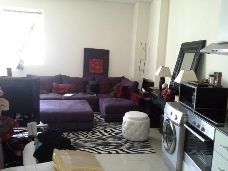 Dubai Marina Studio - TV Lounge - Dubai Marina Studio w/Balcony-Classy and spacious! - Dubai - rentals