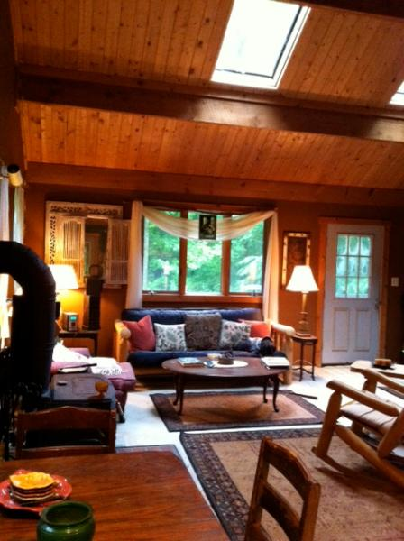 Great space for entertaining after a fun filled day outdoors! - Catskill Lake House - Andes - rentals
