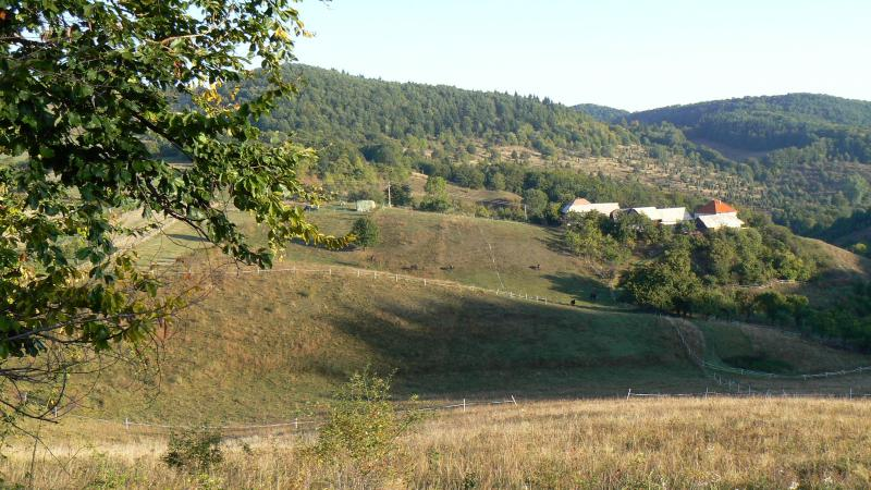 View on Brzov, our smallholding - Brzov - Comfortable country house in nature - Slovakia - rentals