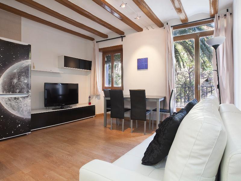 Modern living room - CENTRAL BORNE - Barcelona - rentals