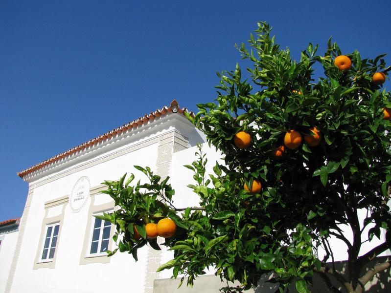 Side View - Casa do Brasão-Cottage w/ private pool near Marvão - Marvao - rentals