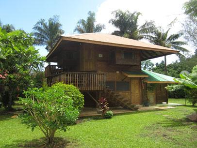 Fare Manu - Image 1 - Maharepa - rentals