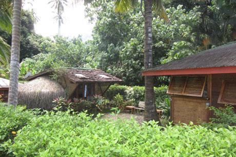 Fare Fetia - Image 1 - Maharepa - rentals