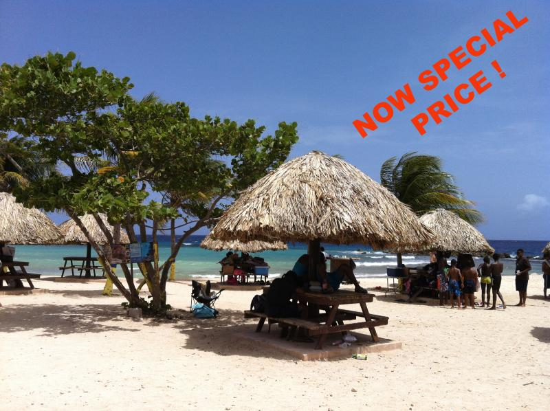 Beach at the Entrance Of Royal Palm Resort - Ocean View 2 bed room Vacation Apartment in Resort - Willemstad - rentals
