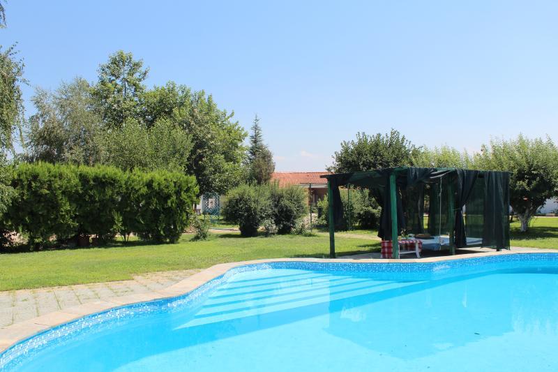 Pool - Galeria In The Garden - garden, pool, art - Plovdiv - rentals