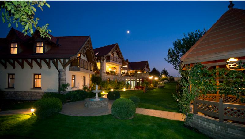 Palazzo Wellness Villa - Image 1 - Eger - rentals