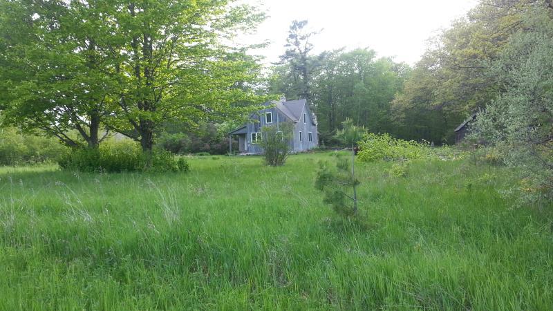 40 Acre Secluded Farmhouse on Washington Island - Image 1 - Washington Island - rentals