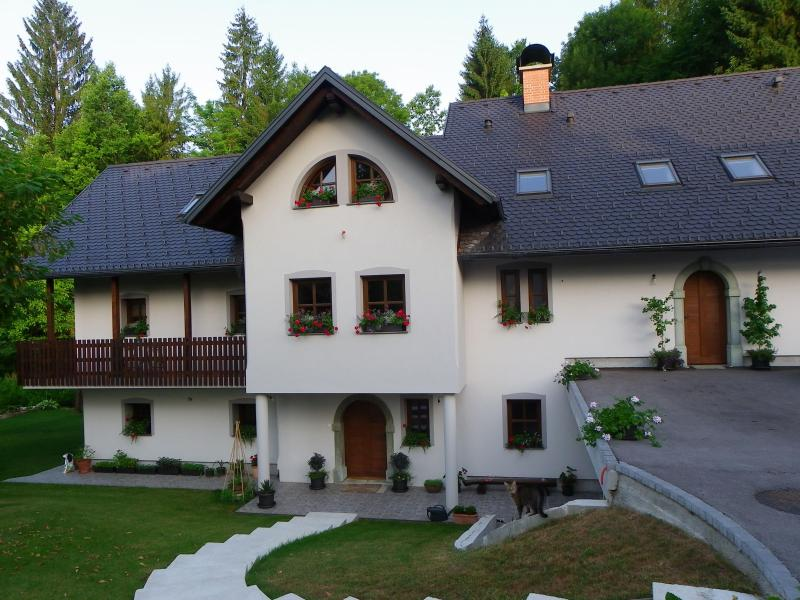The Millhouse Bled - Image 1 - Bled - rentals