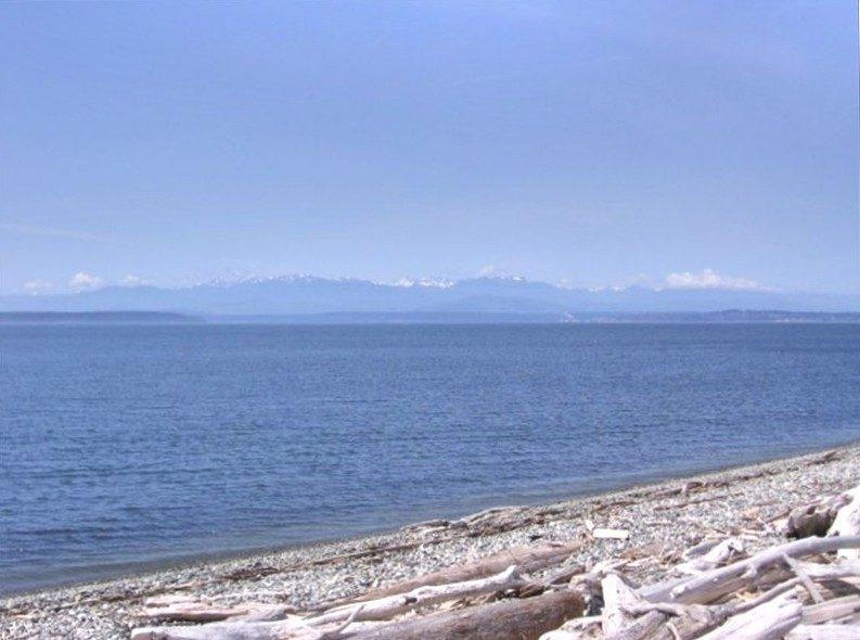 View of Olympics - Salmon Run Beach Getaway - right on the beach! - Coupeville - rentals