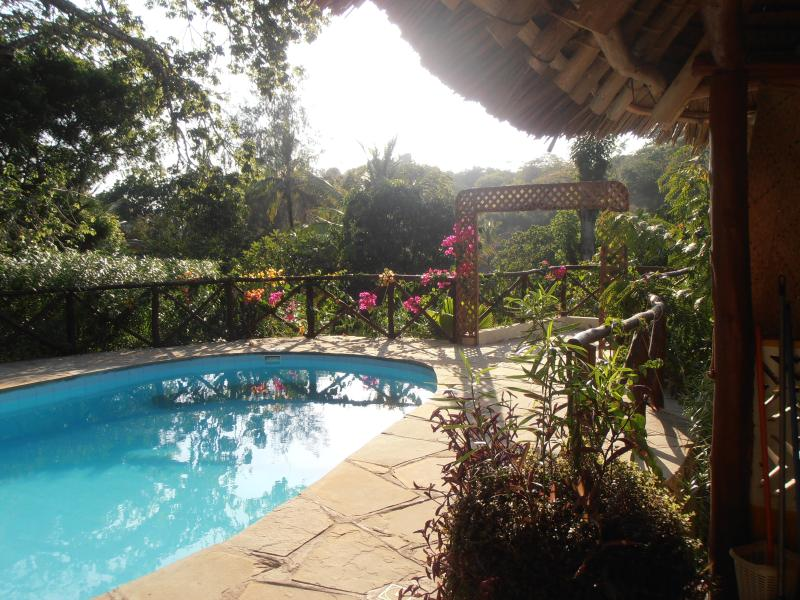 swimming pool - Comfortable bungalow, private pool, chef, close to the beach,situated in a lush tropical garden,Eco-friendly environment, - Kilifi - rentals