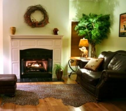 Fireplace Vacation Rental Living Room - Dancing Waters – Relaxing on a Creek, Faultlessly Furnished Country Cottage, Game Room & Fire Pit - Candler - rentals