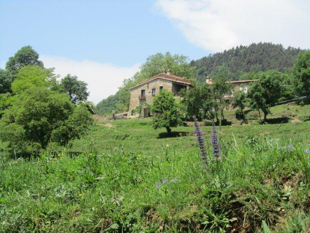 A unique home in a privileged area of ​​Catalan Pyrenees. - Image 1 - Girona - rentals