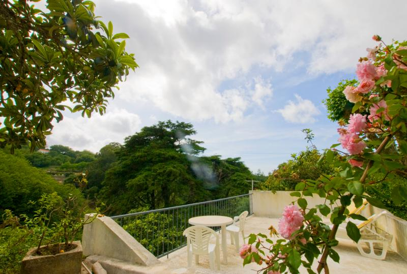 Private Balcony - Sintra Old Town Centre, Small Studio with Views - Sintra - rentals