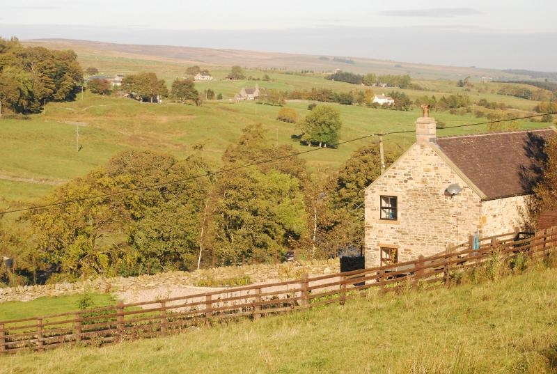 Fell View Cottage, Allendale, Nr Hexham - Image 1 - Allendale - rentals