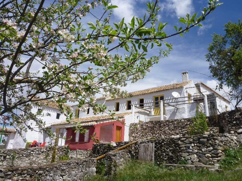Cortijo de la Vina - Cortijo de la Vina - Alhama de Granada - rentals