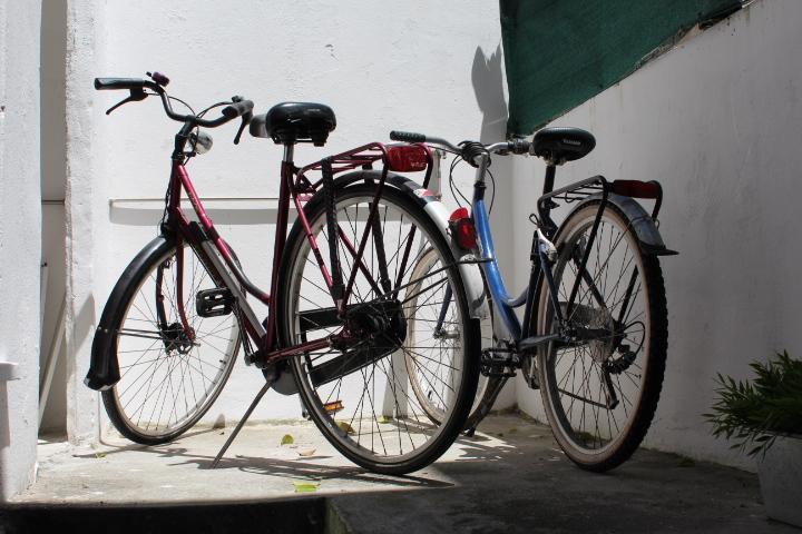 Casa Andorinha free wi-fi and bikes - Image 1 - Porto - rentals
