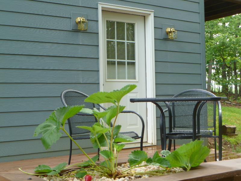 Strawberry Entrance - Forest Retreat for Two at Smith Mountain Lake - Huddleston - rentals