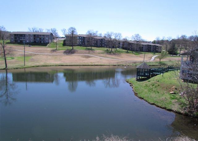 View from Deck - Serenity Falls- Pet Friendly, 2 Bedroom, 2 Bath Condo - Branson - rentals