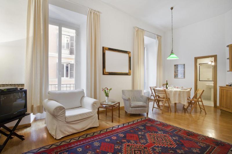 Living room - 25325 - Rome - rentals