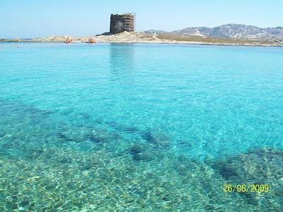 sea of Sardinia - Adelina apartment - Alghero - rentals