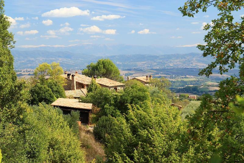 La casetta nel bosco and the panorama - La casetta nel bosco / BACCO apartment - Monte Vibiano Vecchio - rentals