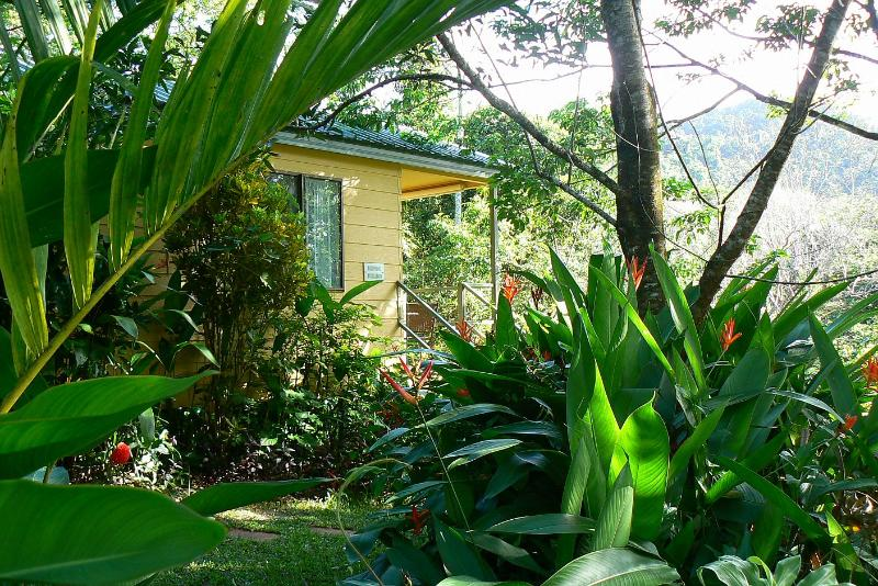 Birdwing Bungalow - Daintree Valley Haven, Self-contained B&B Cabins - Daintree - rentals