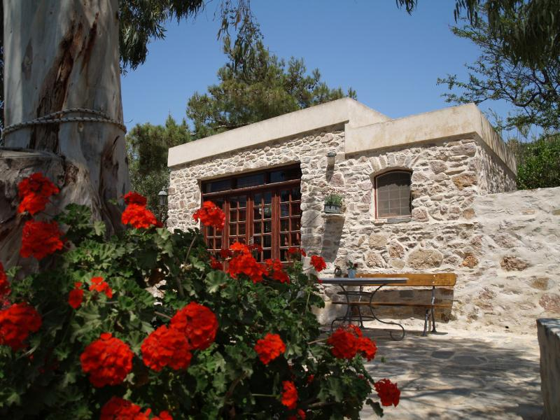 Chroussiano Farmhouse - Traditional studio, farm holidays on Syros island - Siros - rentals