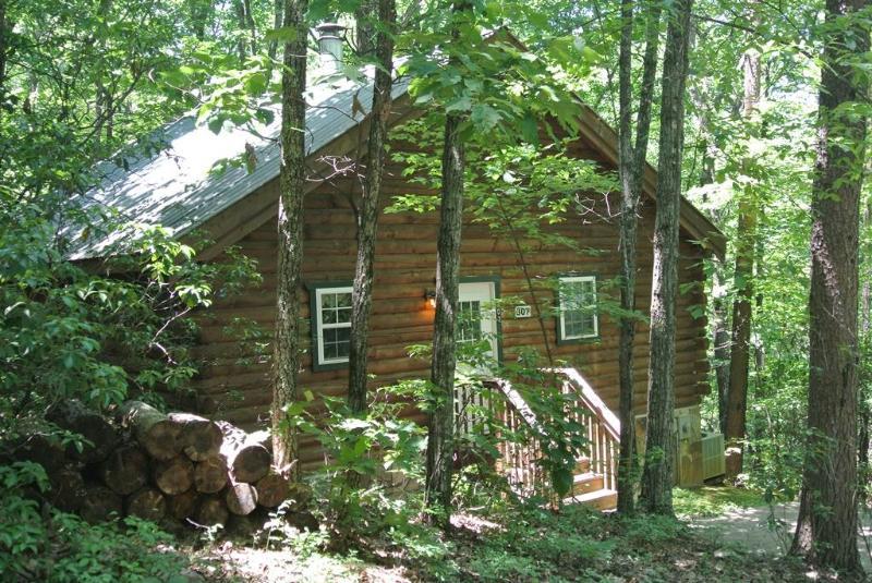 Front View - Mountopia Cabin - Sautee Nacoochee - rentals