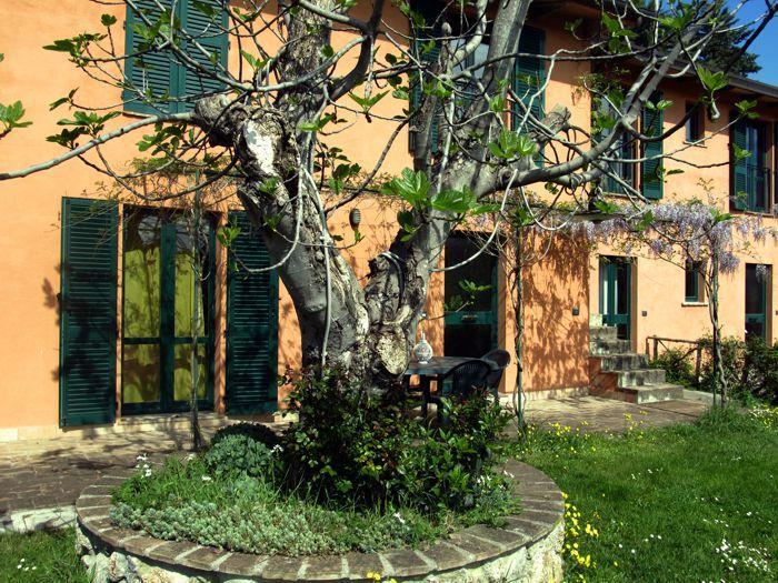Wonderful apartment in Umbria - Fico apartment - Image 1 - Perugia - rentals