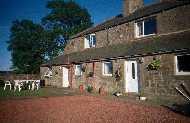 Grandma's to the right - Grandma's Cottage Lorbottle West Steads Thropton - Thropton - rentals