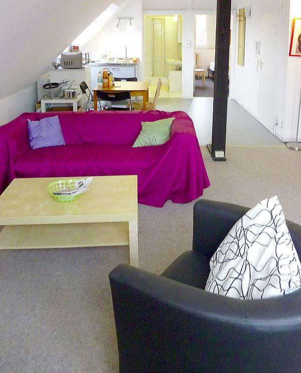 Overview-Kitchenette-Dining-Livingroom-Slepingroom-Bath - Private accommodation - very quiet apartment in Ratingen nearby Dusseldorf - Ratingen - rentals