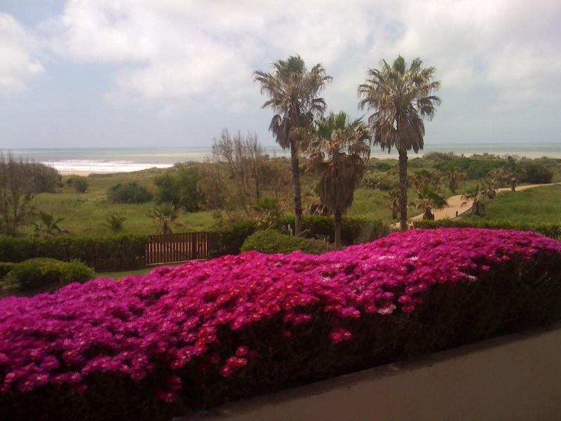 Luxury seafront 3 bedroom apartment 3 min. beach - Image 1 - Cadiz - rentals
