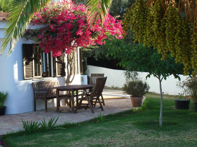Lovely holiday home in Algarve - Carvoeiro - Image 1 - Carvoeiro - rentals