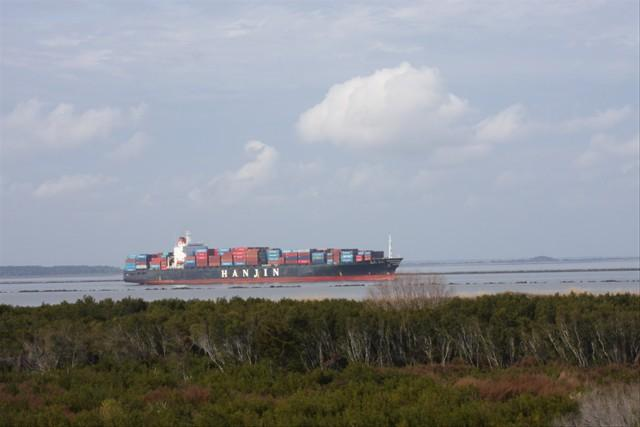 Lighthouse Point Rental 18C - Image 1 - Tybee Island - rentals