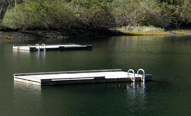 Over Looking Swim Lake - Blue Heron - Lummi Island - rentals