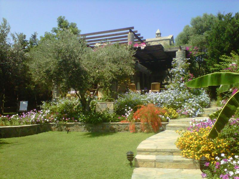 RENTAL HOUSE IN BODRUM - Image 1 - Bodrum - rentals
