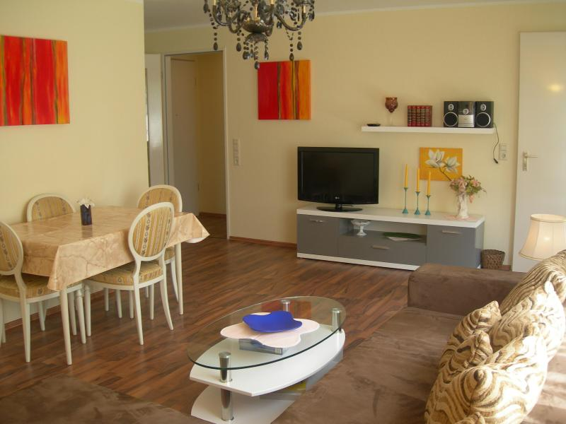 The cosy flat in a lovely city near big city Stuttgart - Image 1 - Metzingen - rentals