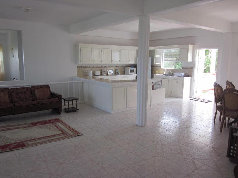 Open plan Lounge/Kitchen/Dining Room - Spacious 3 Bedroom Villa with Roof Terrace - Vieux Fort - rentals