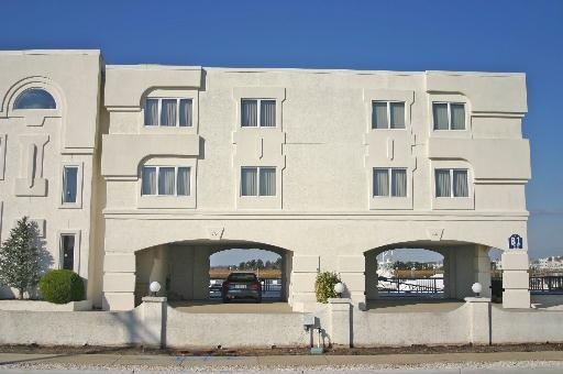 1100 Ocean 8781 - Image 1 - Avalon - rentals