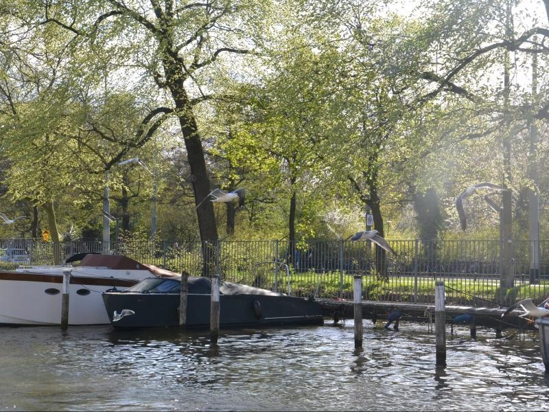 Ams One bedroom Houseboat - Key 1111 - Image 1 - Amsterdam - rentals