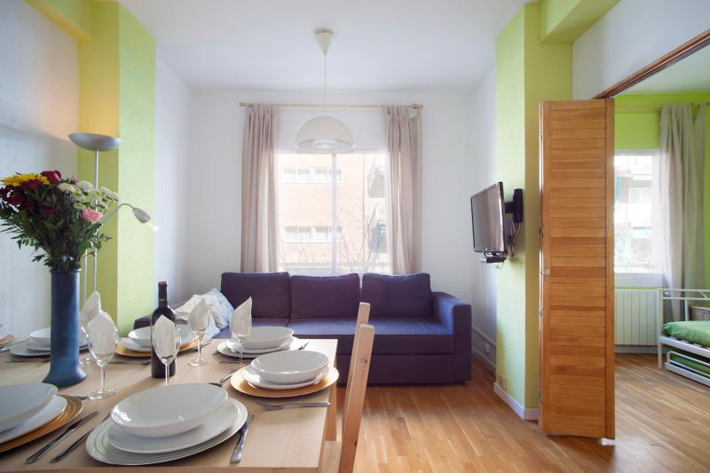 Beautiful three bedroom apartment - Sagrada Familia location (sleeps up to nine) - Barcelona - rentals