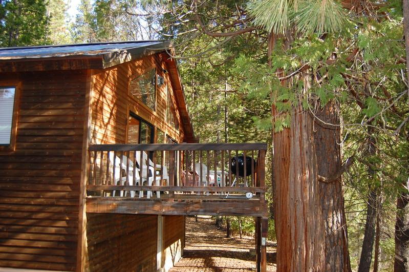 (5N) Edmond's Place - (5N) Edmond's Place - Yosemite National Park - rentals