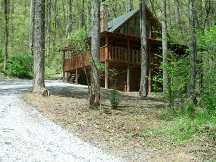 BEARLY VISIBLE - Image 1 - Sevierville - rentals